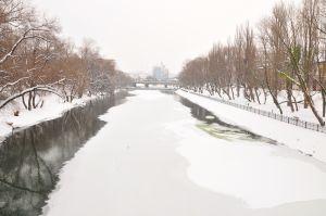 iarna8.jpg